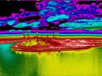 thermal imaging 02 arena_edited-1